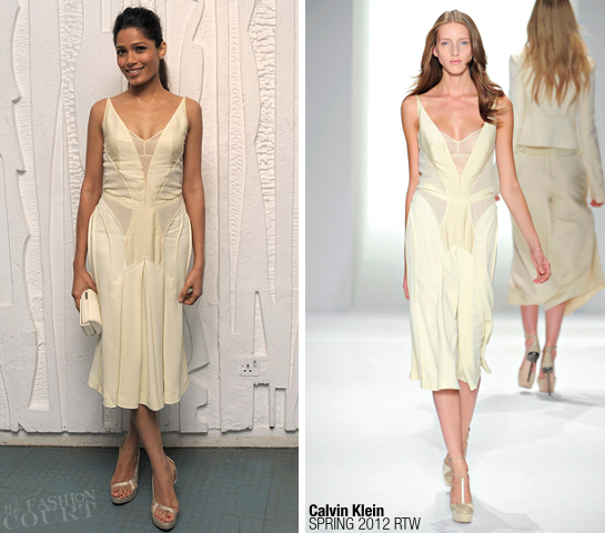 Freida Pinto in Calvin Klein | Calvin Klein Collection Design Museum Dinner